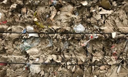 Cardboard Shredded Reels