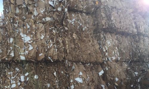 Cardboard DLK Shredded Cardboard