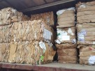 Waste Trade Ltd
