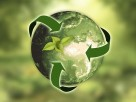 Green Insurance Group